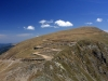 imagine-serpentine-transalpina